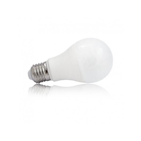 Ampoule LED E27 6W 2700°K - Bulb - Vision-EL